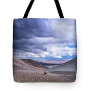 Racing With The Storm Tote Bag