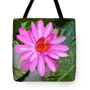 Radiant Pink Tote Bag