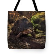 Radiated Tortoise Tote Bag