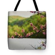 Radner Lake During The Spring Tote Bag
