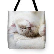 Ragdoll Kitten Asleep Tote Bag