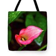 Rain Coated Pink Calla Lily Tote Bag