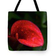Rain Coated Red Anthurium Tote Bag