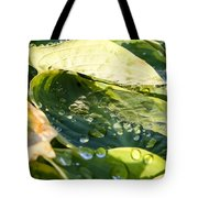Rain Collecting On Hosta Leaves Tote Bag