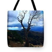 Rain Column Tree Tote Bag