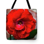 Rain Covered Red Rose Tote Bag