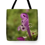 Rain Drop Olympics On Dead Nettle Flower Tote Bag
