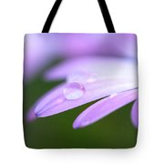 Rain Droplets On A Daisy Tote Bag
