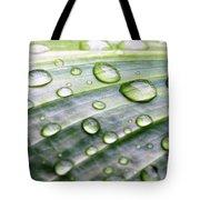 Rain Drops On A Leaf Tote Bag