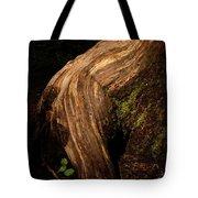 Rain Forest Light Tote Bag