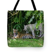 Rain Forest Tigers Tote Bag
