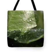 Rain Tote Bag by Jackson Pearson