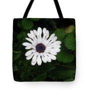 Rain On A White Flower Tote Bag