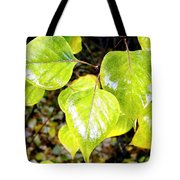 Rain On The Fall Lilac Tote Bag