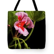 Rain Refreshed Tote Bag