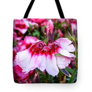 Rain Soaked Dianthus Tote Bag