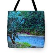 Rain Storm On Lake Linda Tote Bag