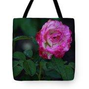 Rain Wet Rose Tote Bag