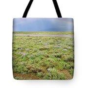 Rainbow And Lupine, Grand Teton Nm, Wyoming Tote Bag