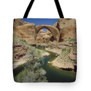 Rainbow Bridge Upstream Tote Bag by Jerry McElroy