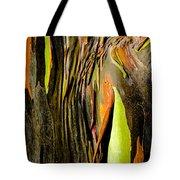 Rainbow Eucalyptus Bark Tote Bag