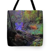 Rainbow Fairies Sweep Across The Landscape Tote Bag
