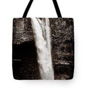 Rainbow Falls 2 - Sepia Tote Bag