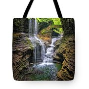 Rainbow Falls In Watkins Glen Tote Bag