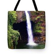 Rainbow Falls Iv Tote Bag
