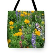 Rainbow Field Tote Bag