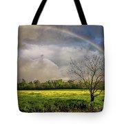 Rainbow Field Tote Bag