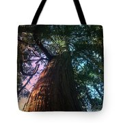 Rainbow Hue Heaven Tote Bag