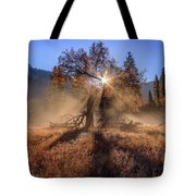 Rainbow In Yosemite Valley Ice Fog Tote Bag