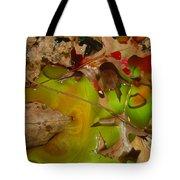 Rainbow Leaves 3 Tote Bag