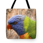 Rainbow Lorikeet Tote Bag
