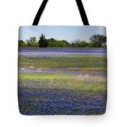 Rainbow On The Ground Tote Bag