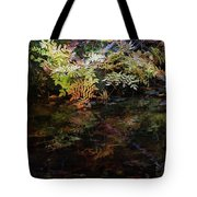Rainbow Pickle Creek Reflections 6272 H_3 Tote Bag