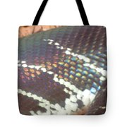 Rainbow Scales Tote Bag