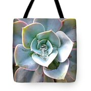 Rainbow Succulent - My Cup Runneth Over Tote Bag