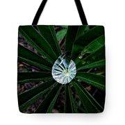 Raindrop Ammonite Tote Bag