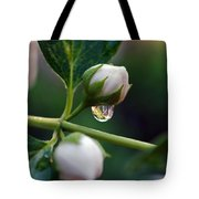 Raindrop Garden Tote Bag