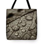 Raindrops #1 Tote Bag