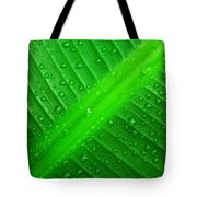 Raindrops ... Tote Bag
