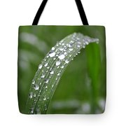 Raindrops On A Blade Of Grass Tote Bag