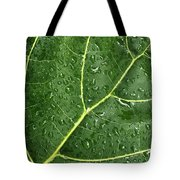 Raindrops On Fiddle Leaf Tote Bag