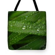 Raindrops On Green Leaves Tote Bag