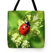 Raindrops On Ladybug Tote Bag