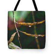 Raindrops On Leaf 3 Tote Bag