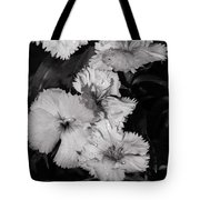 Raindrops On Petals Monochrome Tote Bag
