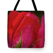 Raindrops On Roses Tote Bag by Valeria Donaldson